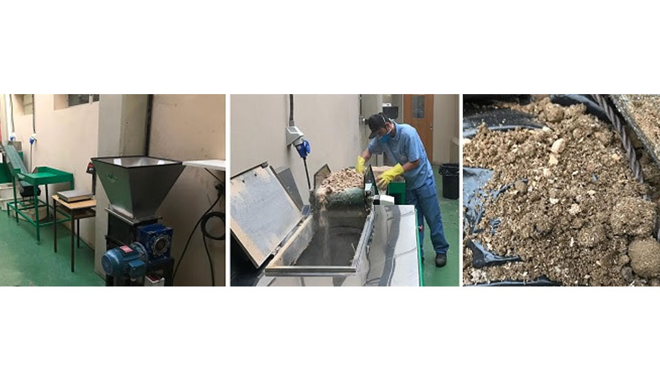 Escola de SP recicla meia tonelada de materiais orgânicos mensalmente