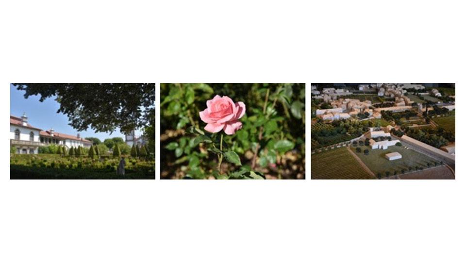 Conheça o projeto que transformou uma vila portuguesa em um imenso jardim
