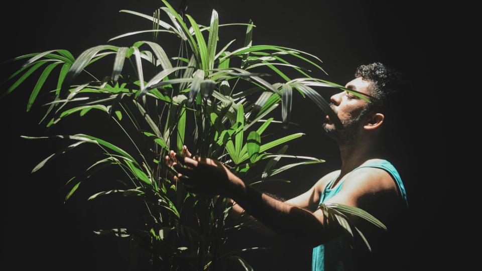 """""""Lugar da Chuva"""", que propõe reflexão poética e política sobre o Amapá, inicia temporada digital"""